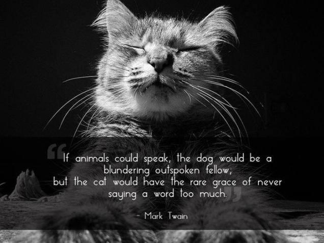 animals could speak